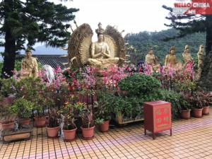 Монастырь Десяти тысяч Будд (фото 4)