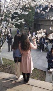 В Китай пришла весна фото 3
