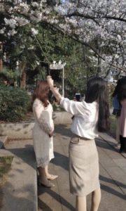 В Китай пришла весна фото 4