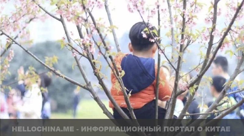 В Китай пришла весна