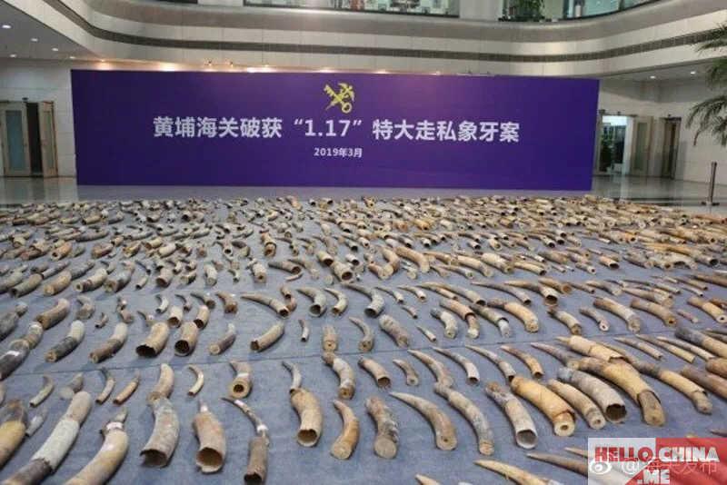 Китай слоновая кость фото 2