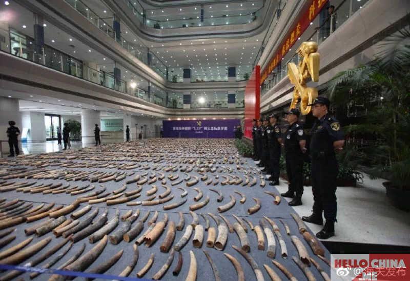Китай слоновая кость фото 3