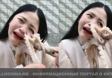 Китаянка засняла неудачную попытку съесть живого осьминога