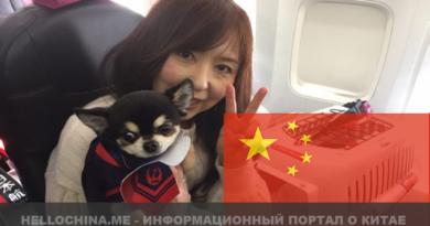 животные в Китае
