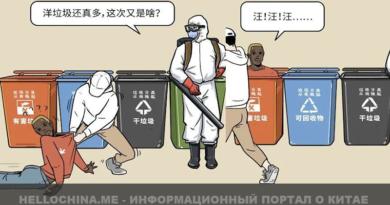 Комикс «Иностранцев сортируют как мусор» в Китае